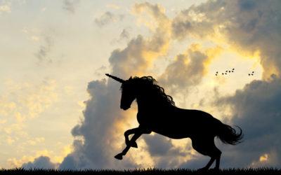 38 - The Movement Unicorn