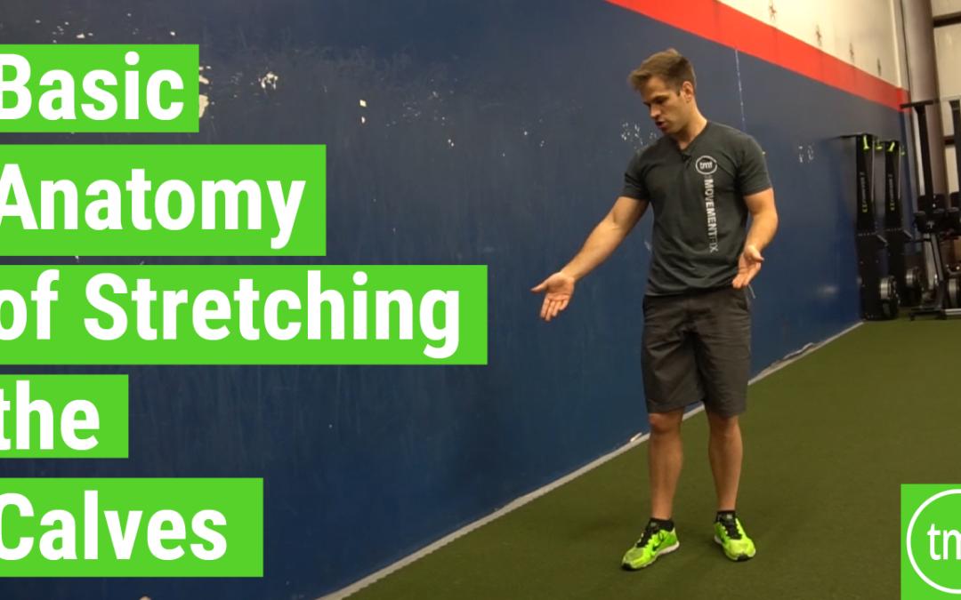 Basic Anatomy of Stretching the Calves