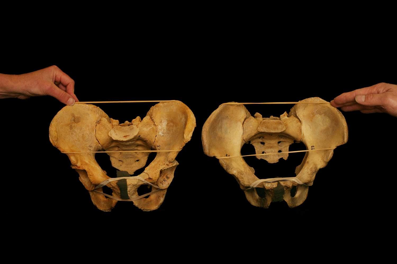 hip socket orientation frontal squat stance